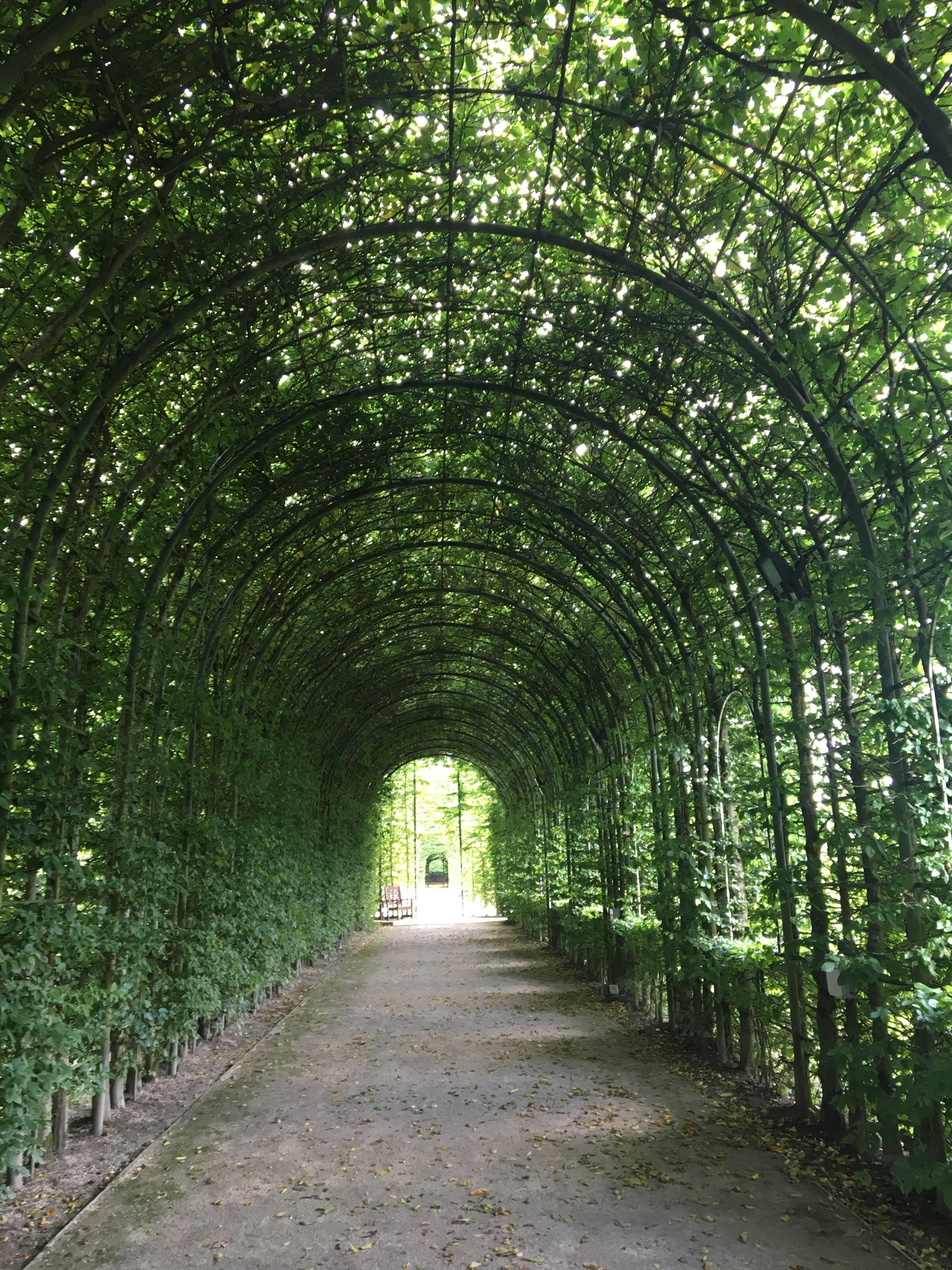 Alnwick Garden3.JPG